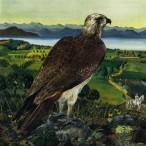Bruno Caruso - Falco sullo stretto di Messina