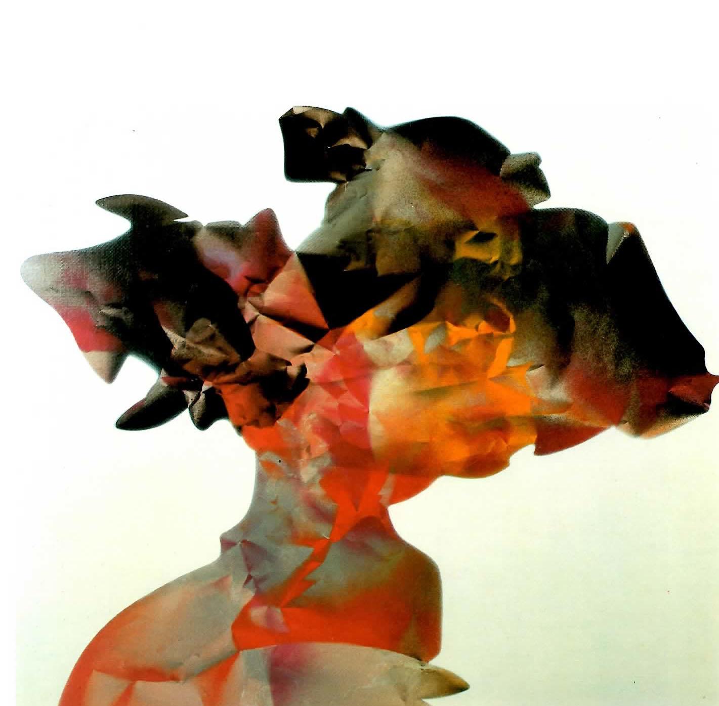 Gustavo Giulietti - La testa della terra