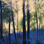 Corinna Ferrarese - Tr'alberi