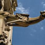 rance. Tours. Cathédrale Saint-Gatien. Gargouilles
